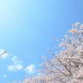「維新の聖地」桜山神社と桜