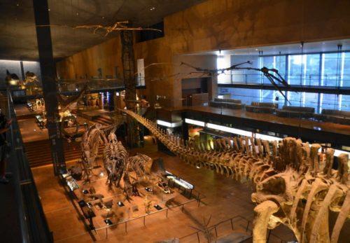 いのちのたび博物館~迫力の恐竜たち!家族連れにもお勧め!~ 公開しました
