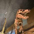 いのちのたび博物館~迫力の恐竜たち!家族連れにもお勧め!~